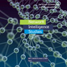 Network Intelligence Studies 7